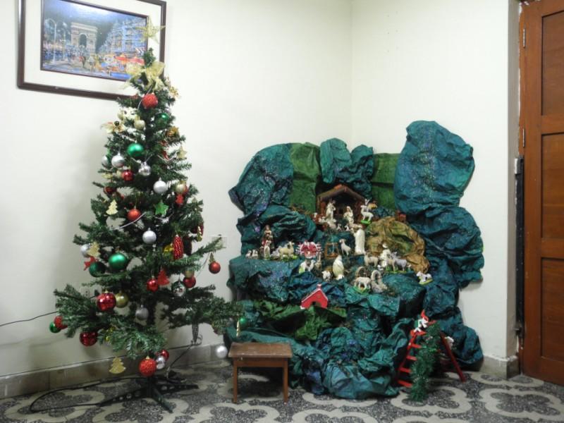 Nacimiento und Weihnachtsbaum